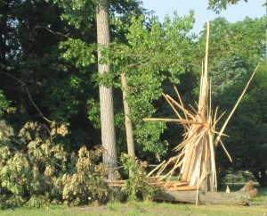 The Lord's sculpture that came out of a storm!
